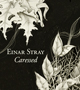sr041_2 - Einar Stray - Caressed